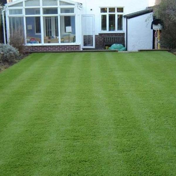 休闲草-庭院-人造草坪地毯