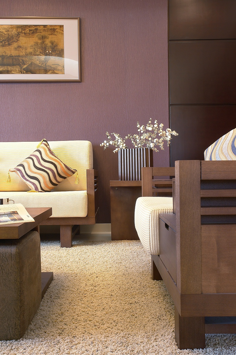 家用地毯 客厅地毯