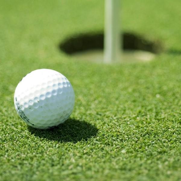 运动草-高尔夫-人造草坪地毯