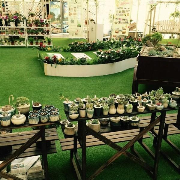 休闲草-景观-人造草坪地毯